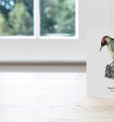Hand Illustrated Green Woodpecker Card