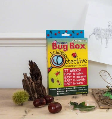 Bug hunting kit for kids, buy online