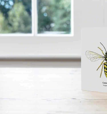 Hand Illustrated Common Wasp Card greeting card