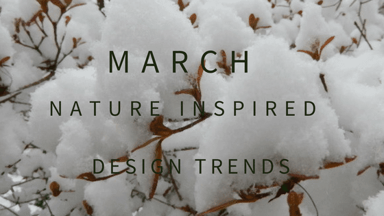 March Blog Header